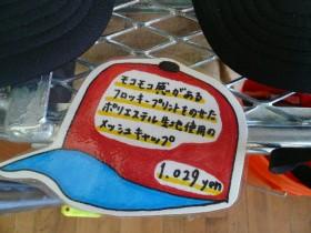 P1040239